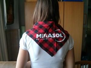 Cachirulo Mirasol